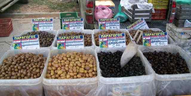 olivki-i-masliny
