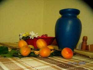 Ветка с абрикосами, подаренная Татьяне мужем Елены