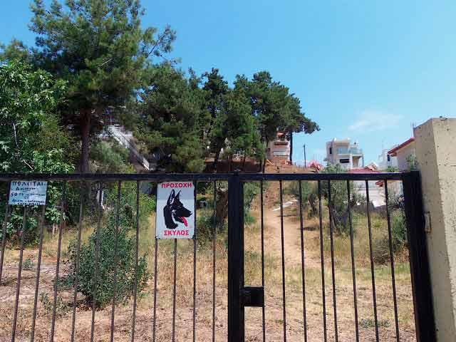 Осторожно, злая греческая собака!