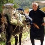 Транспорт в Греции и как до неё добраться