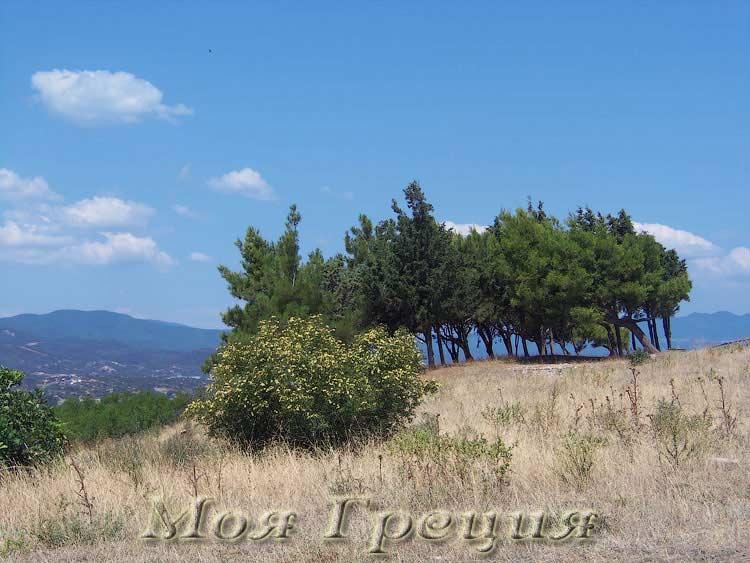 Холмы древнего Акантоса