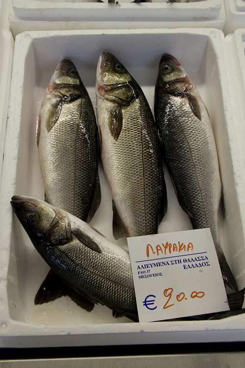 Греческая рыба лавраки