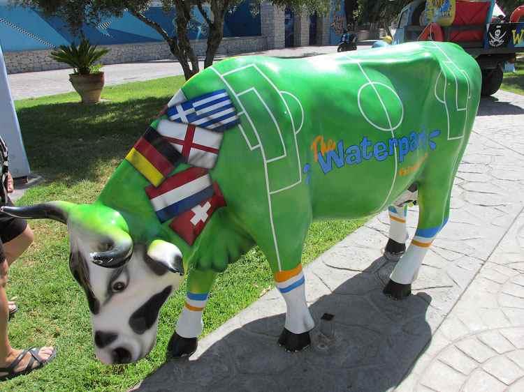 Корова-футболистка