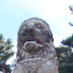 Амфипольский лев — история находки