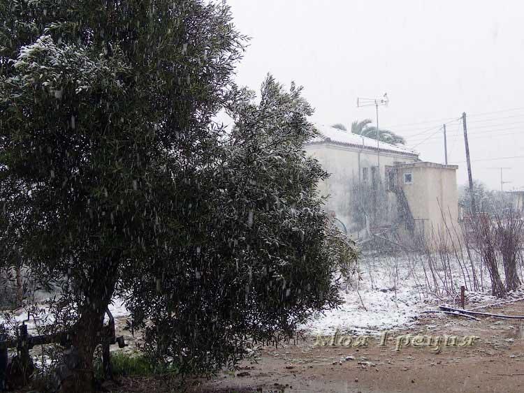 Снег в феврале