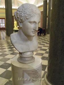 Голова Артемиды, Эрмитаж