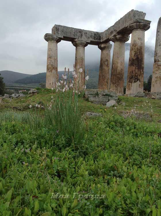 Коринф, Храм Аполлона