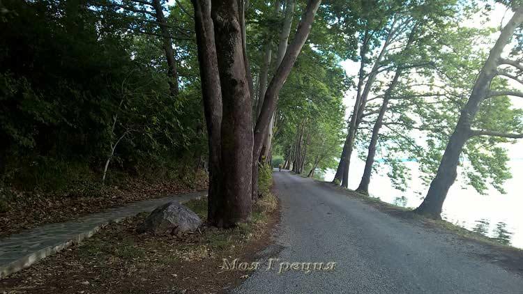 Дорога вокруг озера, Касторья