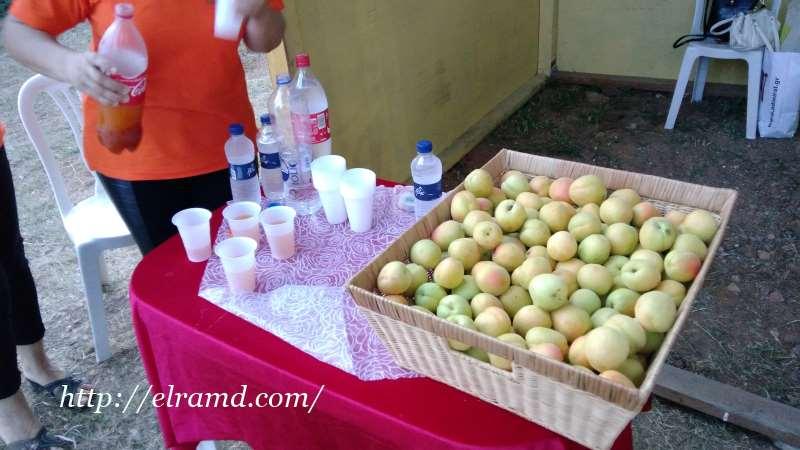 На празднике абрикосов угощают соком Рико