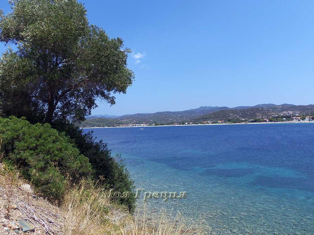 Вид на бухту Торони