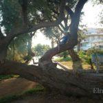 Отдых в Неа Муданья с ребенком — отзыв Тамары Погореловой