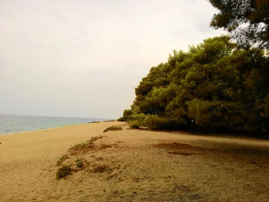 Пляж Лагомандры пуст