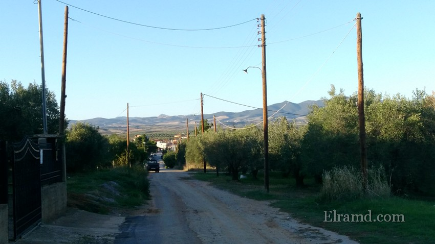Дорога в поля