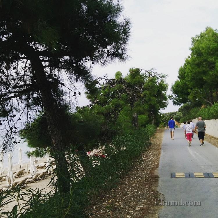 Туристы из Океании гуляют у моря