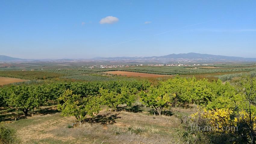 Вдали - горы Холомонда