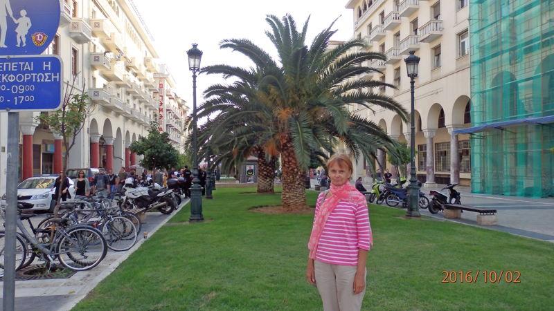 Пальмы на площади Аристотеля
