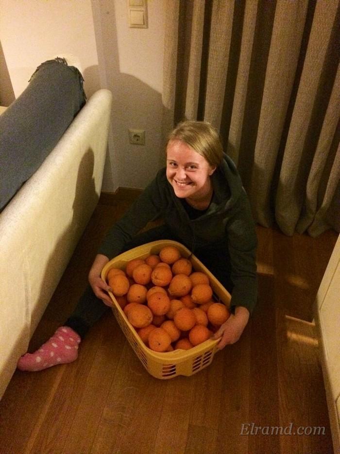 Апельсины ящиками!