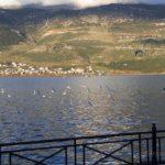 Экскурсия на остров Яннины, озеро Памвотида