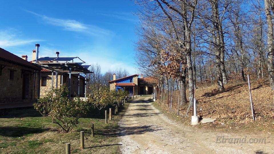 Дорожка на территории комплекса