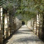 Парки и сады Афин: 5 зелёных оазисов греческой столицы
