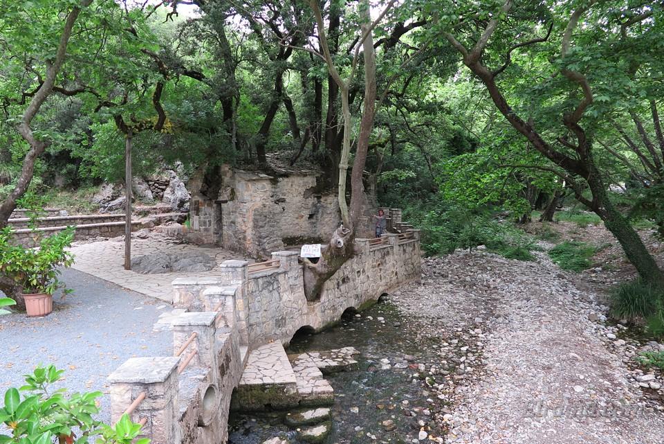 Из-под храма святой Феодоры вытекает весьма солидный поток