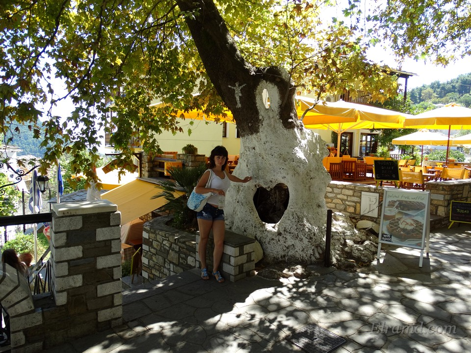 Дерево с дыркой, напоминающей сердце