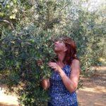 Возвращение в Грецию и открытие Халкидики