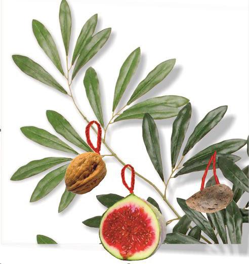 Ирисиони - украшенная ветвь оливы