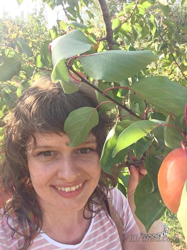 Портрет в абрикосах