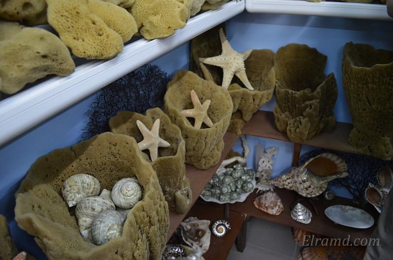 Натуральные губки из кораллов