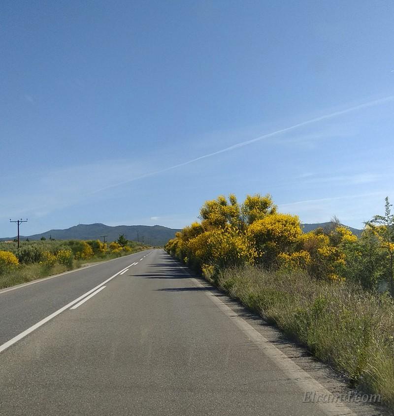 По дороге к Паисию Святогорцу