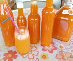 Рецепт сока из абрикосов с мякотью — Рико
